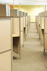 Carpet Cleaning Services in Offices